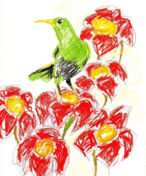 crayon-663940_1920